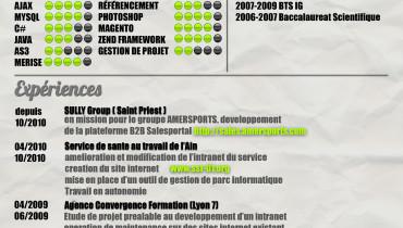 exemple de c.v developpeur web