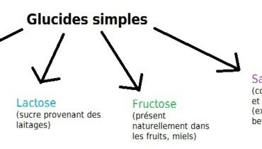 exemple de glucide simple