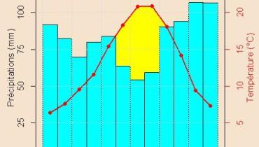 exemple de graphique r