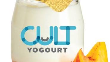 exemple de yogourt