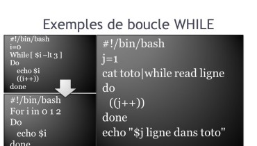 exemple de boucle while unix