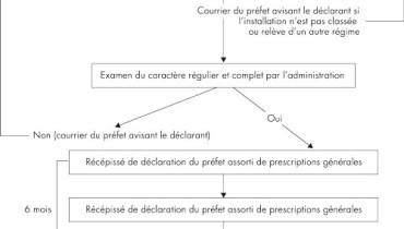 exemple de declaration icpe