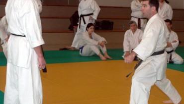 exemple de kihon ippon kumite