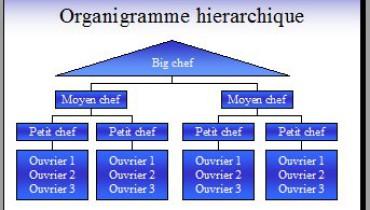 exemple de l organigramme d une entreprise
