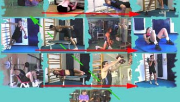 exemple de circuit training musculation