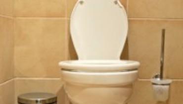 exemple de devis remplacement wc
