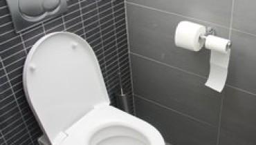 exemple de toilette
