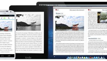 exemple de ebook