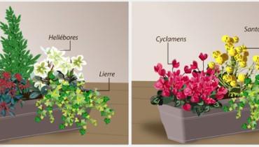 exemple de jardiniere
